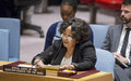 Statement of the Special Envoy of the Secretary-General for the Sahel to the Security Council